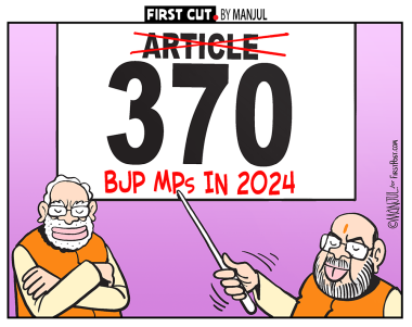Jammu and Kashmir News Updates: Amit Shah claims Article 370