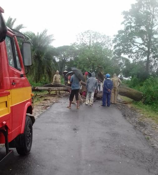 Cyclone Titli kills nine in AP, Odisha